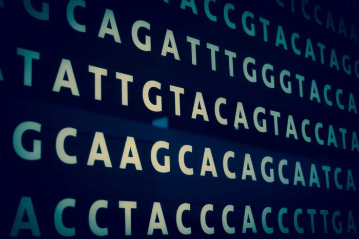 Encoded DNA Sequence