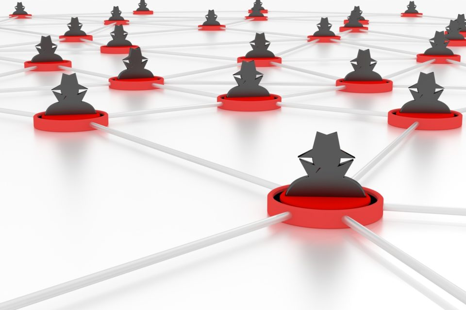 IoT Botnet Hide n Seek HNS